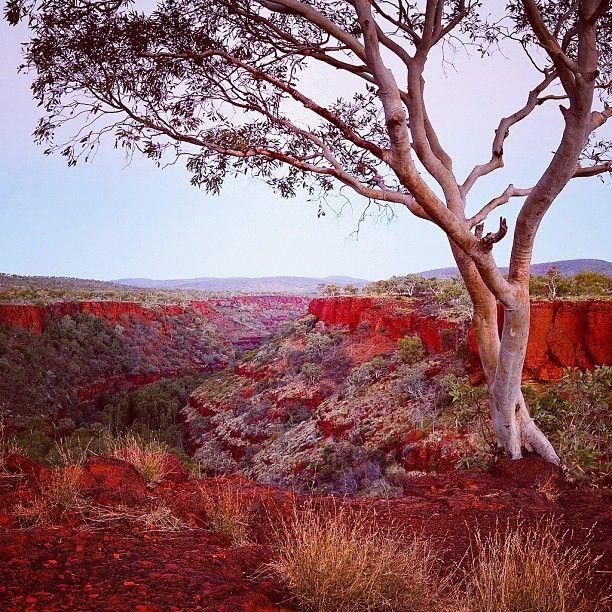 Dale's Gorge Karijini NP Western #Australia by quietachiever (instagram)