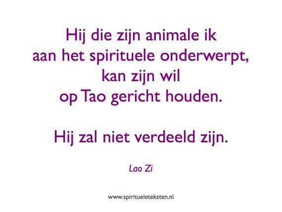 Hij die zijn animale ik aan het spirituele onderwerpt, kan zijn wil op Tao gericht houden. Hij zal niet verdeeld zijn. Lao Zi, spirituele teksten