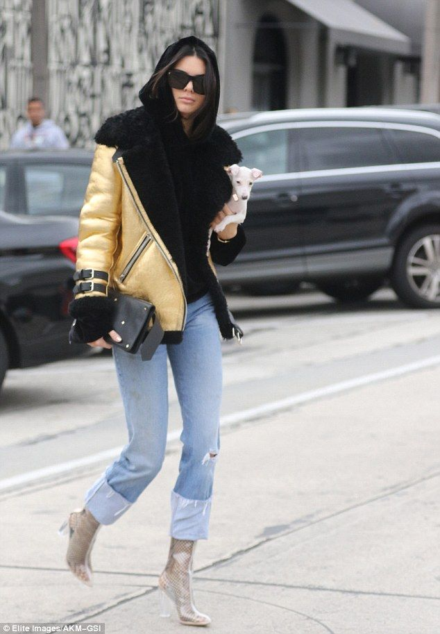 Shopping buddies! Kendall Jenner had her cute little dog in her arms as she shopped in West Hollywood with BFF Hailey Baldwin and several other pals on Monday
