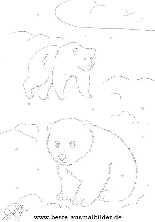 Ausmalbild Eisbär Polarbär