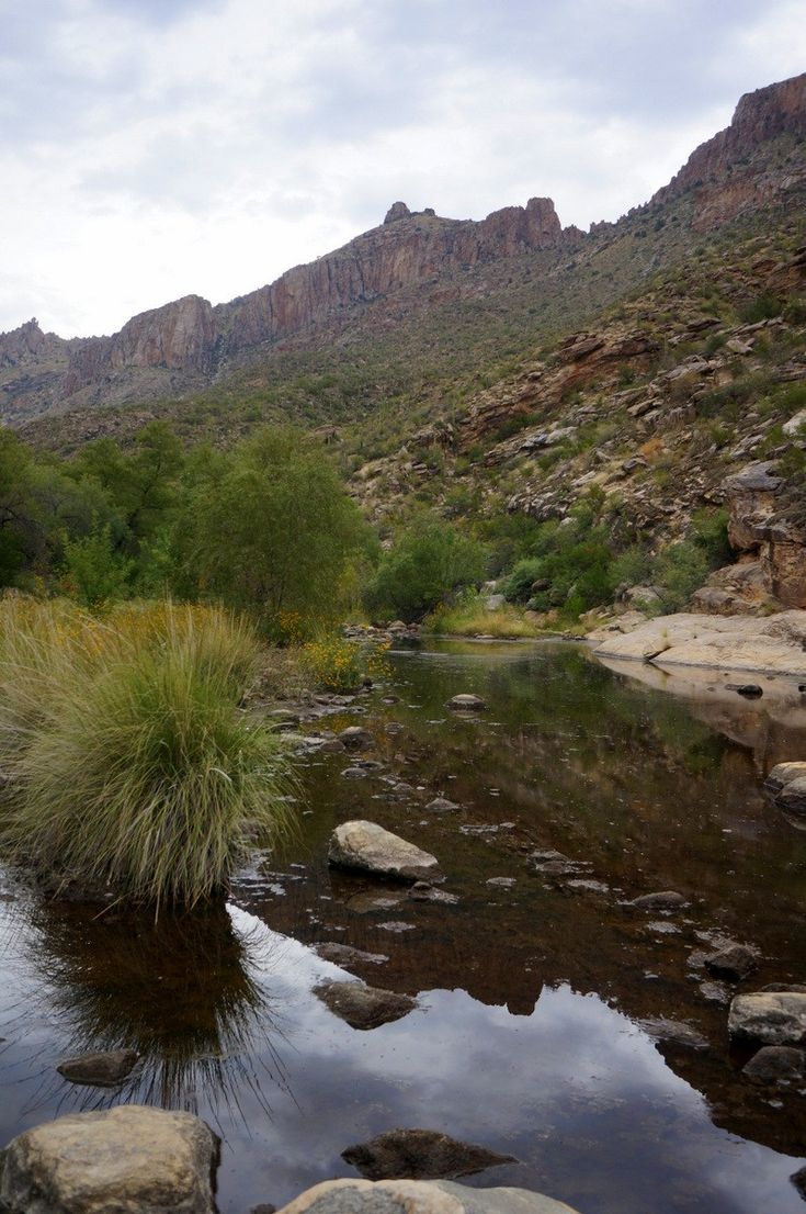 Best Tucson Arizona Images On Pinterest Tucson Arizona And - 10 things to see and do in tucson