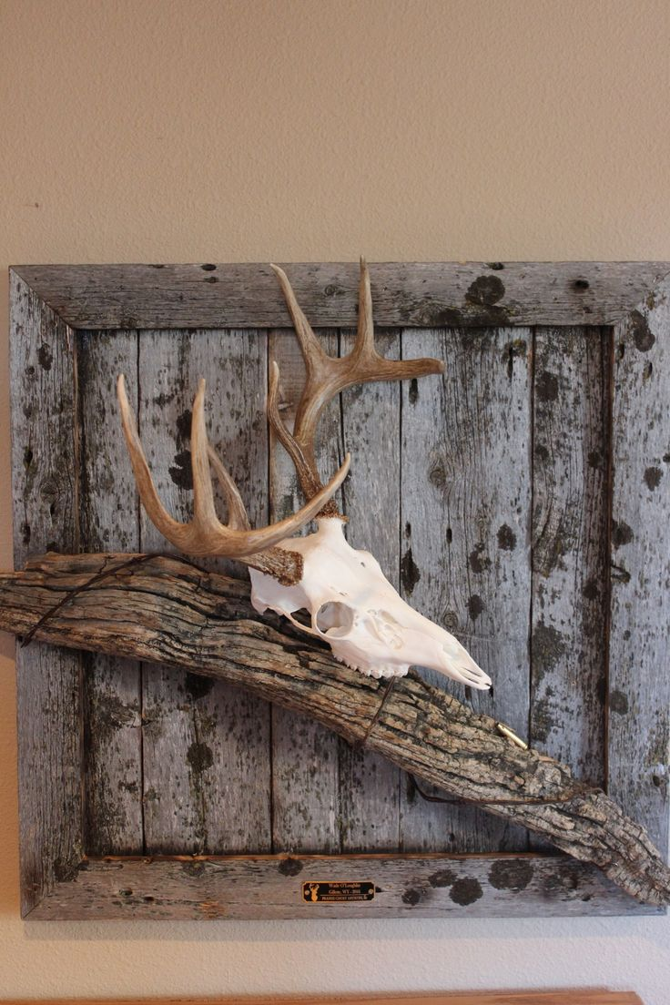 best horseshoes images on pinterest craft ideas garden deco and