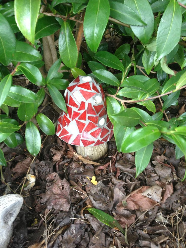 Mosaic toadstool made by me now in my garden
