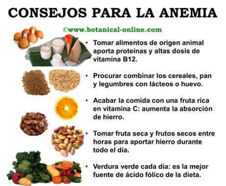 DIFERENCIAS ENTRE EL HIERRO DE ORIGEN ANIMAL Y VEGETAL