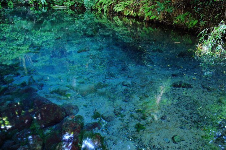トリップアドバイザーが2015年8月に発表した、「目にも涼しい!口コミで選ぶ日本の湧水・名水ランキング」TOP10をご紹介します。長い年月をかけて大地に濾過された清らかな水が、こんこんと湧き上がる!日本には、そんな湧水・名水スポットが数多くあるんです!見ているだけで吸い込まれそう、思わず持ち帰りたくなるそんな魅力的な湧き水・名水スポットをランキング形式で発表していきます!