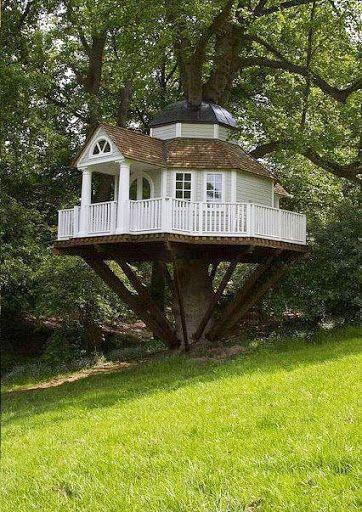 Casas en arboles, no dejes de ver esta espectacular colección de fotos de las mejores casa en arboles.