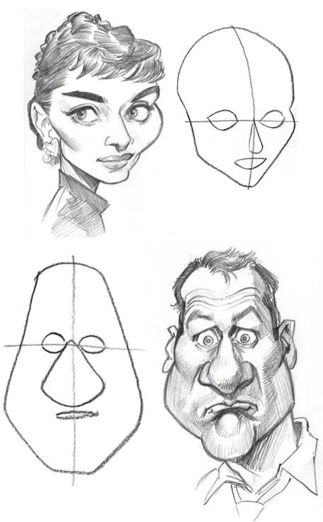 Additional head shapes
