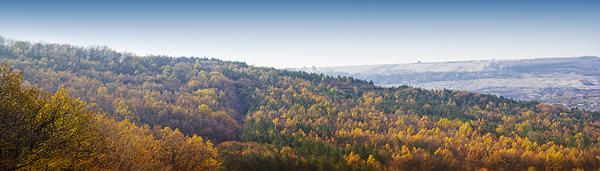 autumn panorama with colored forest with diorama effect