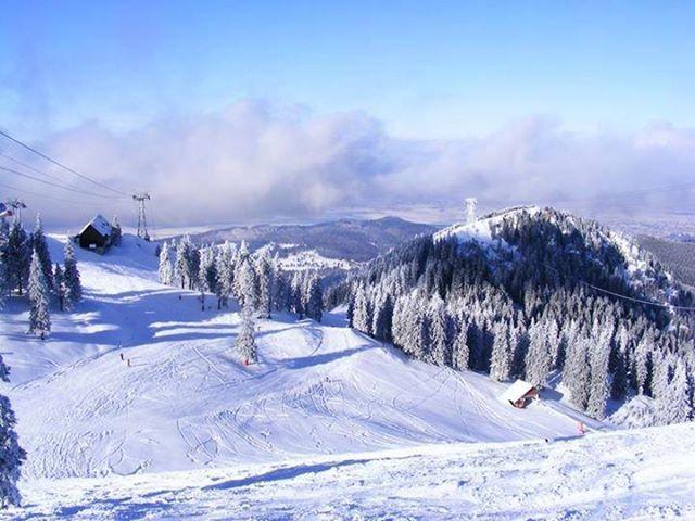 Visăm deja la vacanță, la pârtii pline de zăpadă și multă distracție...Ce destinații ne puteți recomanda?