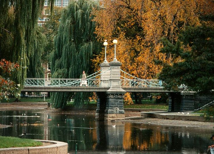 17 Best ideas about Boston Garden on Pinterest Boston Boston