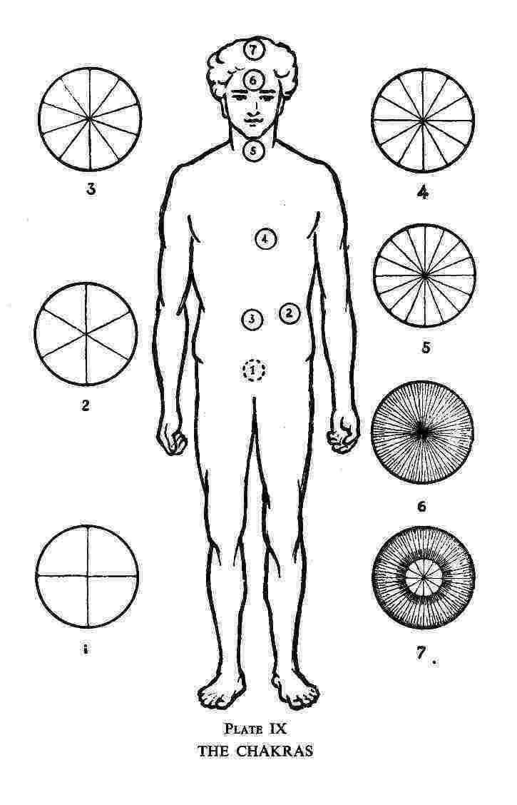 Theosophy : Hidden Life in Freemasonry by Mahatma C. W. Leadbeater : :