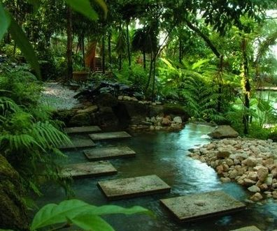 Tropical Spice Garden, Penang is a commercial landscaped garden located in between Batu Ferringhi and Teluk Bahang. It covers an area of 8 acres and is planted with about five hundred different types of tropical plants ranging from herbs to garden plants and trees.