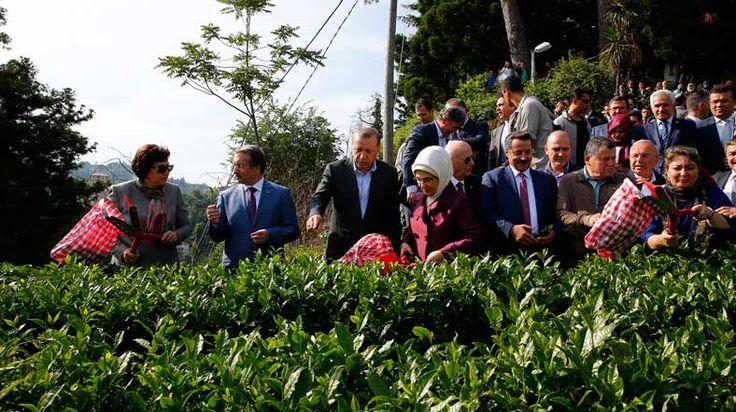 CHPden Başkanlar İçin Yargıtay ve Danıştaya Başvuru