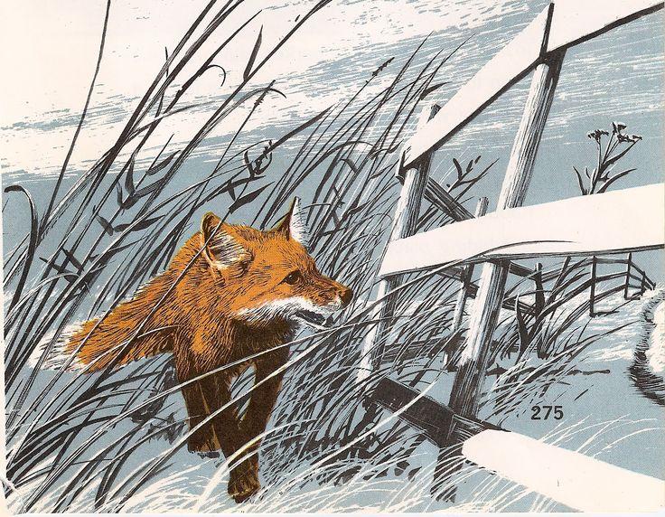 free vintage fox print