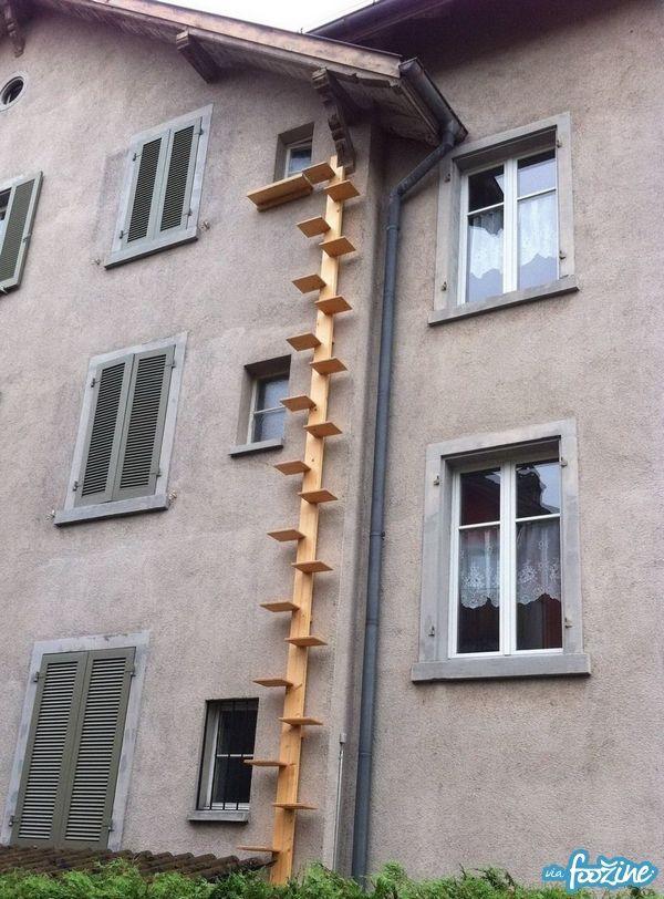 Escalier pour Chat - foozine.com