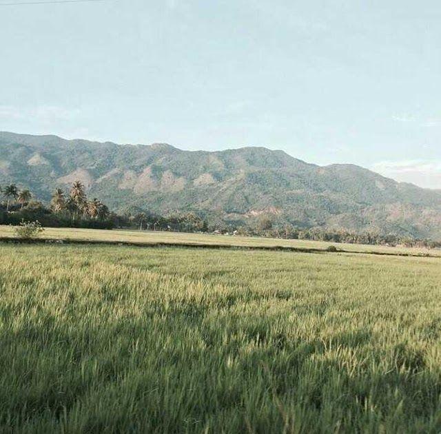 Terbaru 30 Gambar Pemandangan Di Gunung Es Pemandangan Sawah Dan Gunung Yang Indah Steemit Download Gunung Prau Dieng Pemandan Di 2020 Pemandangan Gambar Lanskap