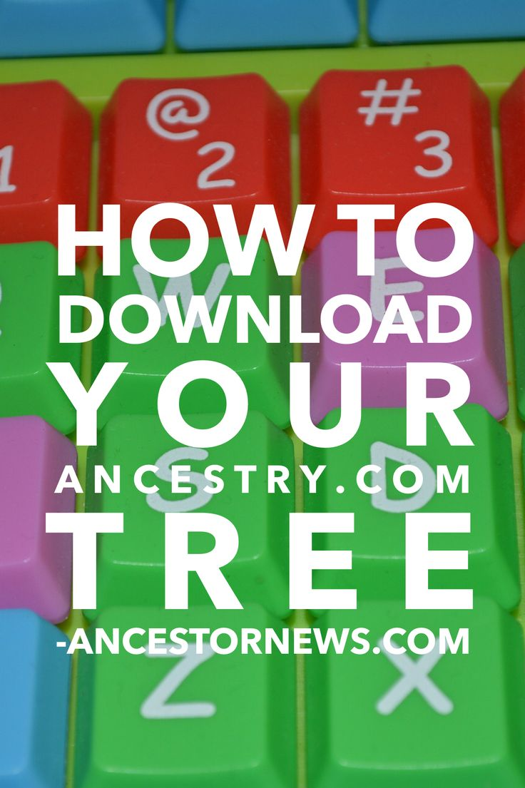 how to download my family tree from ancestry