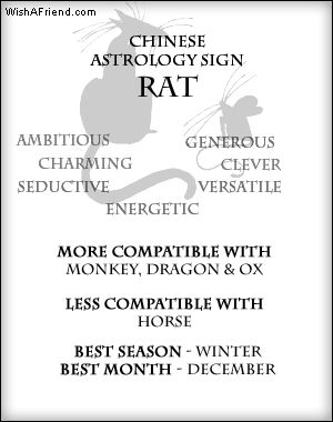 Your Chinese Zodiac Profile- Rat - the month of december is really not my month, I can assure you that ;-)