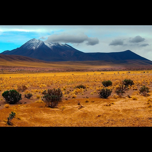 Volcan Miscanti ( 5613 mts), located in the altiplano (highlands) of the Antofagasta Region, in northern Chile. This picture was taken 3200 mts  above sea level.