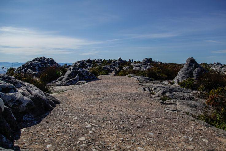 Table Mountain-0163