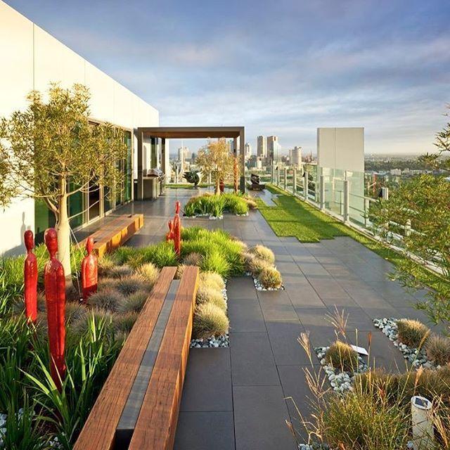 «Современный дизайн сада на крыше пентхауса. #design #creative #roof #garden #nice #дизайн #ландшафт #озеленение #растения #крыша #пентхаус #красота»