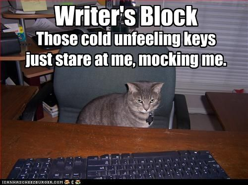 So, when you can't think of anything to write, look up cat memes made by other people who also have no idea what to write.
