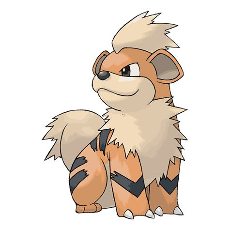 Pokemon Growlithe stats, Pokedex Number 057, Moves learned, Evolution chart, Sprites, Breeding, TM HM, Omega Ruby, Ruby Sapphire, X, Y Pokéathlon stats ORAS