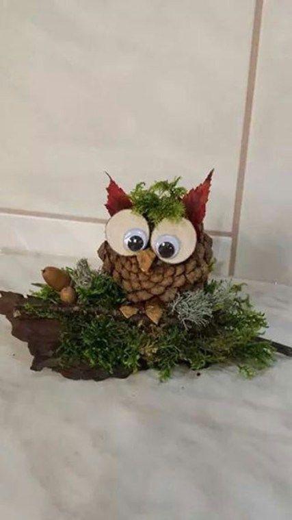 Hatalmas ajándék a természettől. El sem képzelhető a karácsonyi- és az őszi dekoráció tobozoz nélkül.