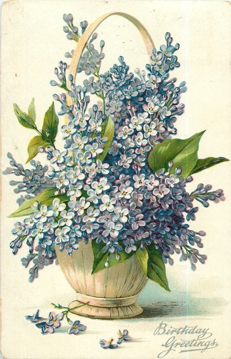 Bouquet of purple lilac in a round wicker basket ~ 1908