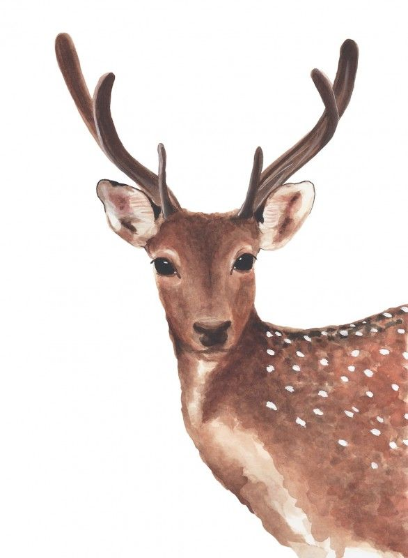 Dotty the Deer Giclee Print For Me By Dee