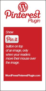 """Show the Pinterest """"Pin It"""" button on top of your images, only when people move their mouse over the image."""