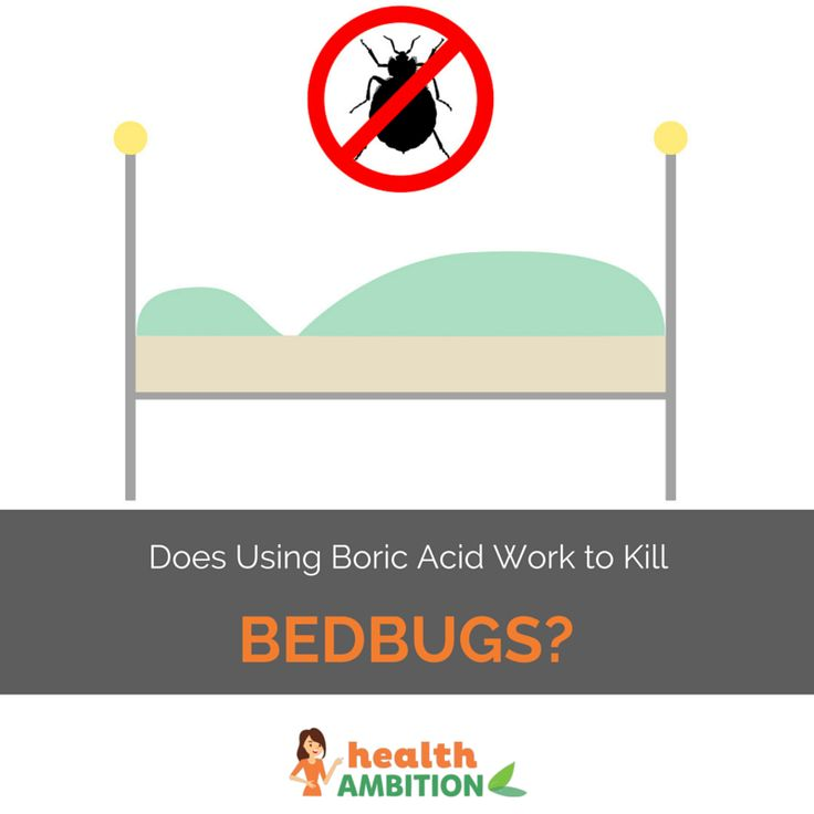 Home Remedies To Get Rid Of Bed Bugs Naturally Bed Bug Bites Rid Of Bed Bugs Bed Bug Remedies