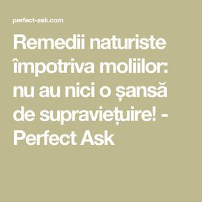 Remedii naturiste împotriva moliilor: nu au nici o șansă de supraviețuire! - Perfect Ask