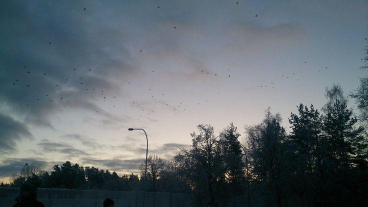 sky by Jelena1631