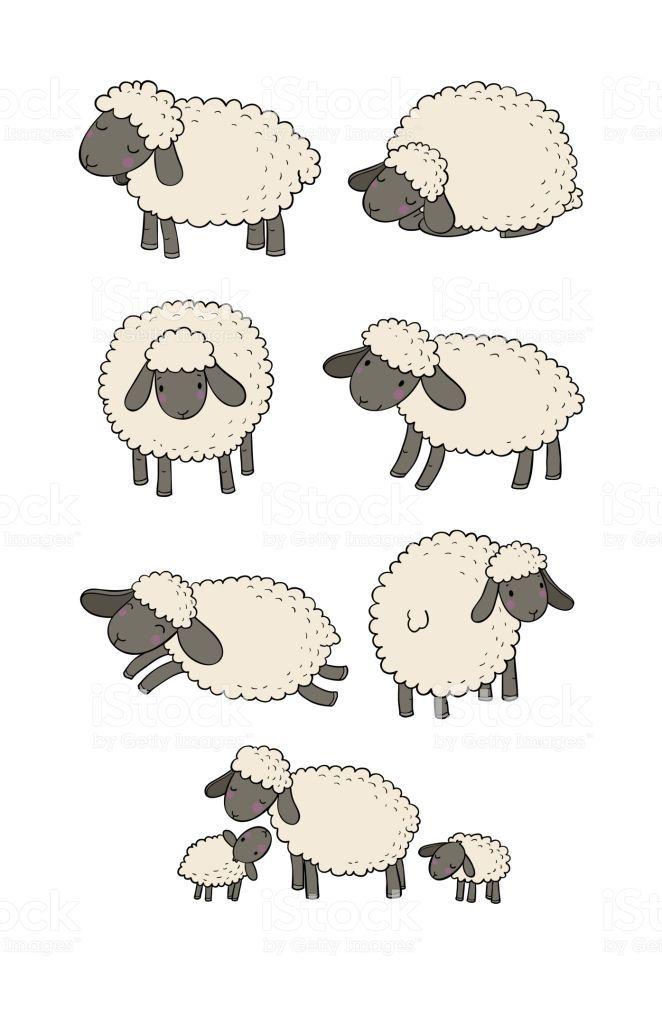Vector Illustration Sheep Illustration Sheep Drawing Sheep Cartoon