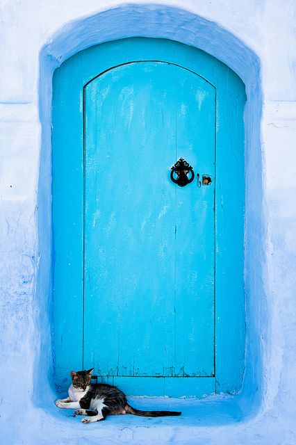 A door is so more welcoming with a kittie in front of it...Chefchaouen, Morocco