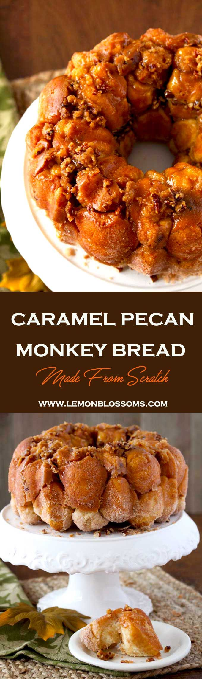 This homemade Caramel Pecan Monkey Bread is chewy, sweet, sticky and made from scratch! Cinnamon sugar dough balls bake in gooey caramel-pecan resulting in a delectable treat! via @lmnblossoms