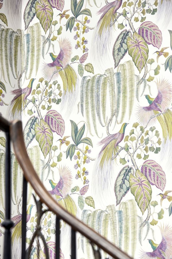 Bird Of Paradise By Sanderson Orchid Wallpaper 216654 With Images Orchid Wallpaper Iconic Wallpaper Marimekko Wallpaper