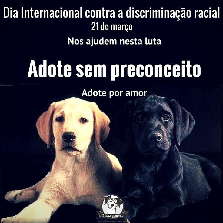 Dia contra a Discrimação Racial