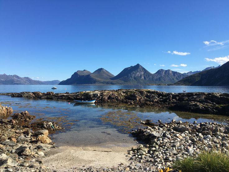 Nyyyydelige daga på Bjørnøya :)