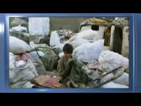 I Gatti Persiani - Trailer Italiano/ IL FILM DI BAHMAN GHOBADI
