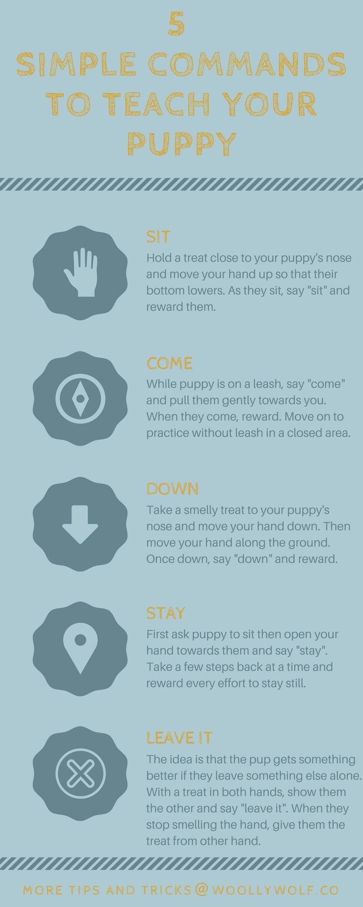 5 Simple Commands to teach your puppy. Puppy training tips, dog training ideas. By Woolly Wolf.