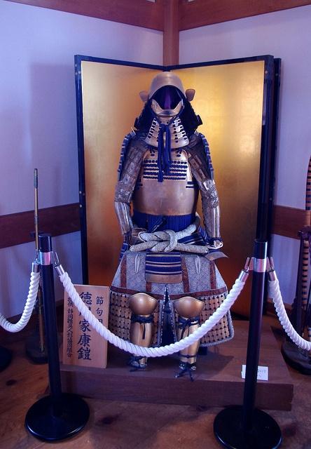 Ieyasu tokugawa's armour