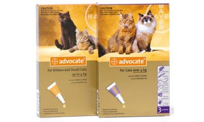 The most complete all in one parasite protection! Advocate
