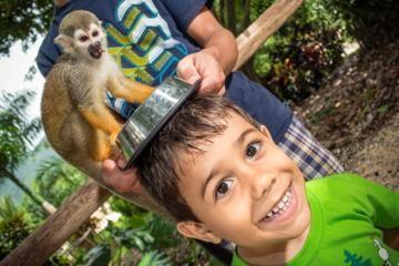 Monkeyland - Punta Cana excursion  http://www.tripadvisor.com/AttractionProductDetail?product=7096MONKEY