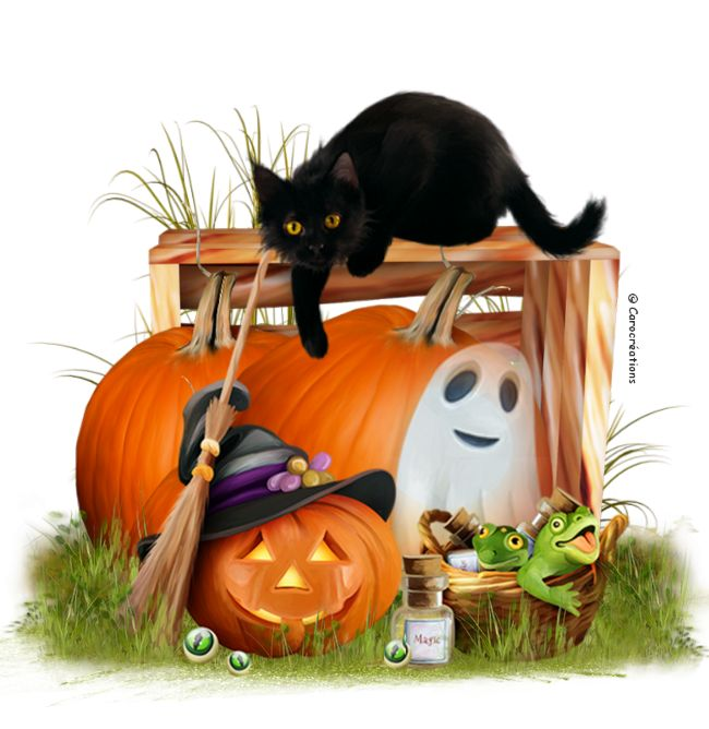Pin By Sara On Halloween (With Images)