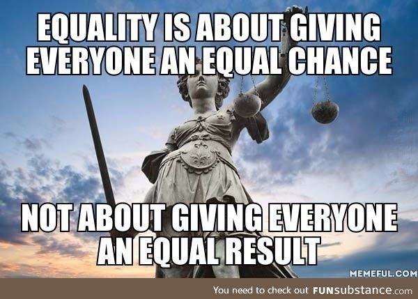What equality means