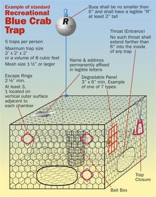blue crab trap diagram