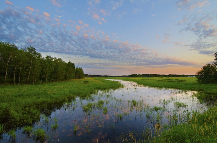 A sunset near Princeton is reflected by a small water body. There is a lot of MN where a small body of water, a gravel road, and a June sunset really show nature's beauty -- photo by Ethan Swanson