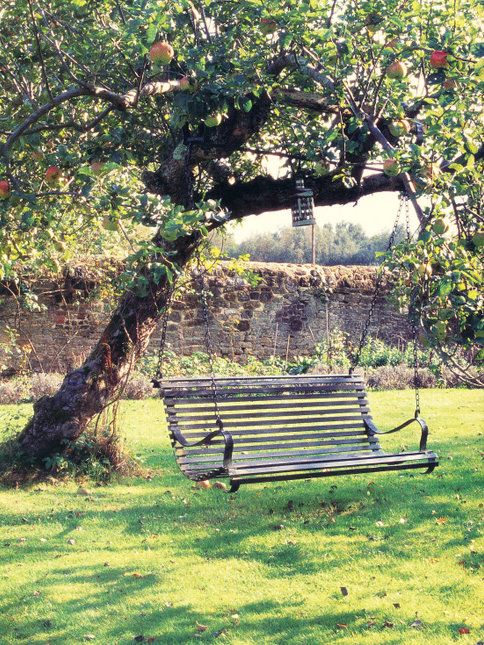 Apple tree w/ bench swing; Josephine Ryan